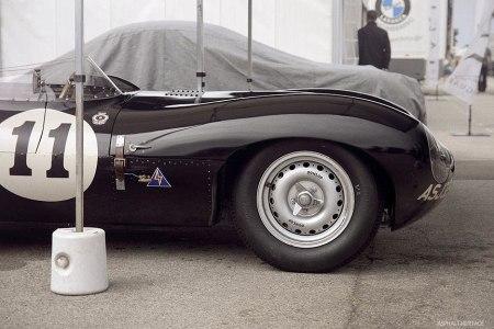 Jaguar-d-type