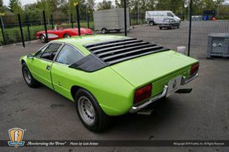 Fuelfed_Luis_bertone-green