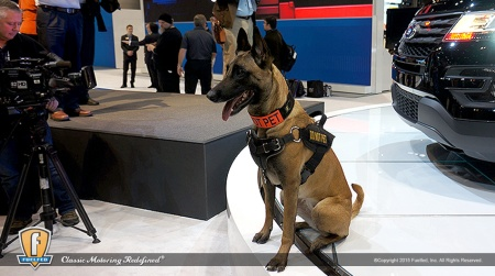 fuelfed-CAS15-police-dog